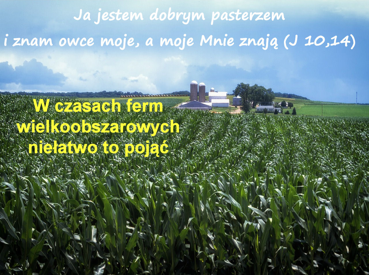 dobry_pasterz
